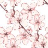 Blom- krans 4 för vattenfärg bakgrund isolerad white Royaltyfri Fotografi
