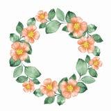 Blom- krans för vattenfärg Rund ram 02 stock illustrationer