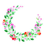 Blom- krans Girland med det vallmoblomman, bäret och örten Royaltyfria Bilder