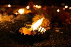 blom- lampa för diwali Royaltyfri Foto
