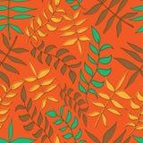 blom- leafs mönsan seamless Arkivfoto