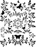 blom- leafsilhouette för abstrakt element Royaltyfri Bild