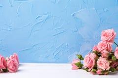 blom- livstid fortfarande Royaltyfri Foto