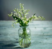 blom- livstid fortfarande fotografering för bildbyråer