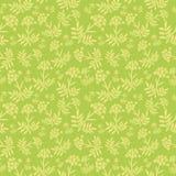 Blom- mönstra Arkivbild