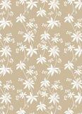 blom- modell Royaltyfri Bild