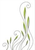 blom- modell stock illustrationer