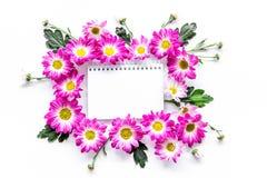Blom- modell Arket av papper i ram av rosa färger blommar på bästa sikt för vit bakgrund Royaltyfria Foton