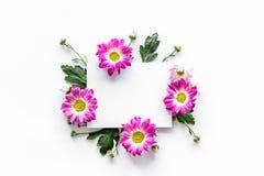 Blom- modell Arket av papper i ram av rosa färger blommar på bästa sikt för vit bakgrund Royaltyfria Bilder