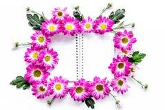 Blom- modell Arket av papper i ram av rosa färger blommar på bästa sikt för vit bakgrund Royaltyfri Bild