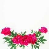 Blom- modell av pionen och sidor på vit bakgrund Lekmanna- lägenhet, bästa sikt Modell som göras av blommor Arkivfoto