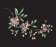 Blom- modell för broderitrend med filialen av tropisk japan Arkivbild