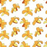 Blom- modell med daylilys också vektor för coreldrawillustration royaltyfri illustrationer