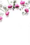 Blom- modell med den ljusa blomman på den vita modellen för bästa sikt för bakgrund Royaltyfria Bilder