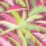 Blom- modell med palmträdsidor Tropiskt orange för sommarnatur Royaltyfri Bild