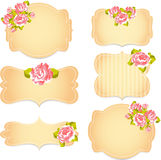 Blom- modell med rosor på rosa färg- och blåttbakgrund vektor illustrationer