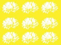 Blom- modell med vita blommor på gul bakgrund Arkivbilder