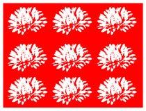 Blom- modell med vita blommor på röd bakgrund Royaltyfria Foton