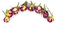Blom- modell som göras av röda och gula rosor, gröna sidor, branc Royaltyfria Foton