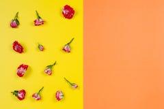 Blom- modell som göras av rosor på gul och orange bakgrund Lekmanna- lägenhet, bästa sikt Arkivbild