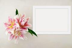 Blom- modell utformat materielfotografi med den vita ramen Royaltyfri Foto