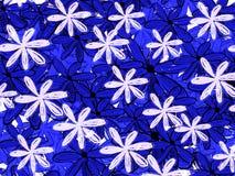 Blom- modellbakgrund för blå hawaiansk stil royaltyfri illustrationer