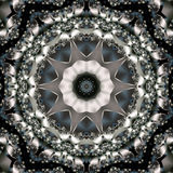 blom- monokrom stjärna Arkivfoton