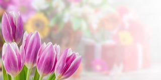 Blom- naturbakgrund Royaltyfria Bilder