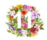 Blom- nummer 11 elva från lösa blommor och örten vattenfärg stock illustrationer