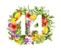 Blom- nummer 14 fjorton från blommor för flygillustration för näbb dekorativ bild dess paper stycksvalavattenfärg royaltyfri foto