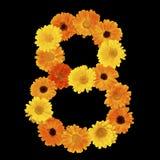 Blom- nummer 8 som isoleras på svart bakgrund Arkivbilder