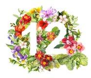 Blom- nummer 12 tolv från lösa blommor och örten vattenfärg stock illustrationer