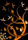 blom- orange för bakgrund Arkivfoton