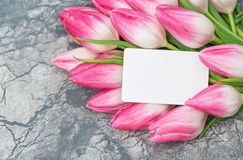 Blom- ordning för rosa etikett för tulpanblommavitbok Fotografering för Bildbyråer