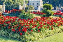 Blom- ordningar framme av Buckingham Palace Fotografering för Bildbyråer
