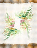 blom- papper Arkivbild