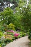 blom- park Royaltyfria Bilder