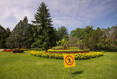 Blom- parkera Arkivfoton