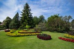 Blom- parkera Fotografering för Bildbyråer