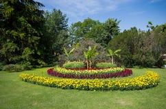 Blom- parkera Arkivbilder