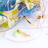 blom- petal fotografering för bildbyråer