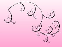 blom- pink Arkivbild