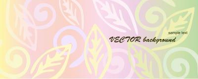 blom- pink för bakgrund Arkivbilder