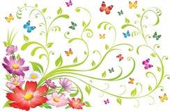 blom- prydnad för bakgrund Royaltyfri Fotografi