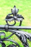 Blom- prydnad för järn Del av det antikvitet buktade staketet i Warszawa Royaltyfria Foton