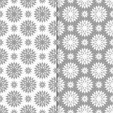 Blom- prydnader för vit och för grå färger seamless set för bakgrunder Arkivbild