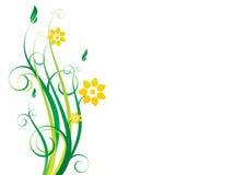 blom- prydnadvektor Arkivbilder