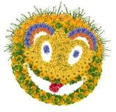 Blom- psychodelic leende royaltyfri foto