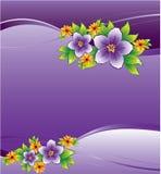 blom- purple för bakgrundsdaggdroppe Stock Illustrationer