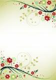 blom- ram Arkivbilder
